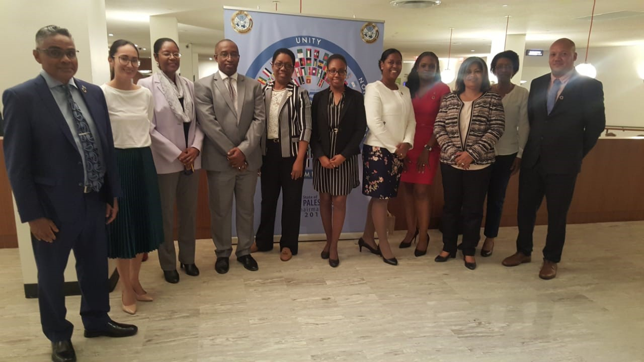 CAROSAI Attends Joint Meeting held by UNDESA and IDI
