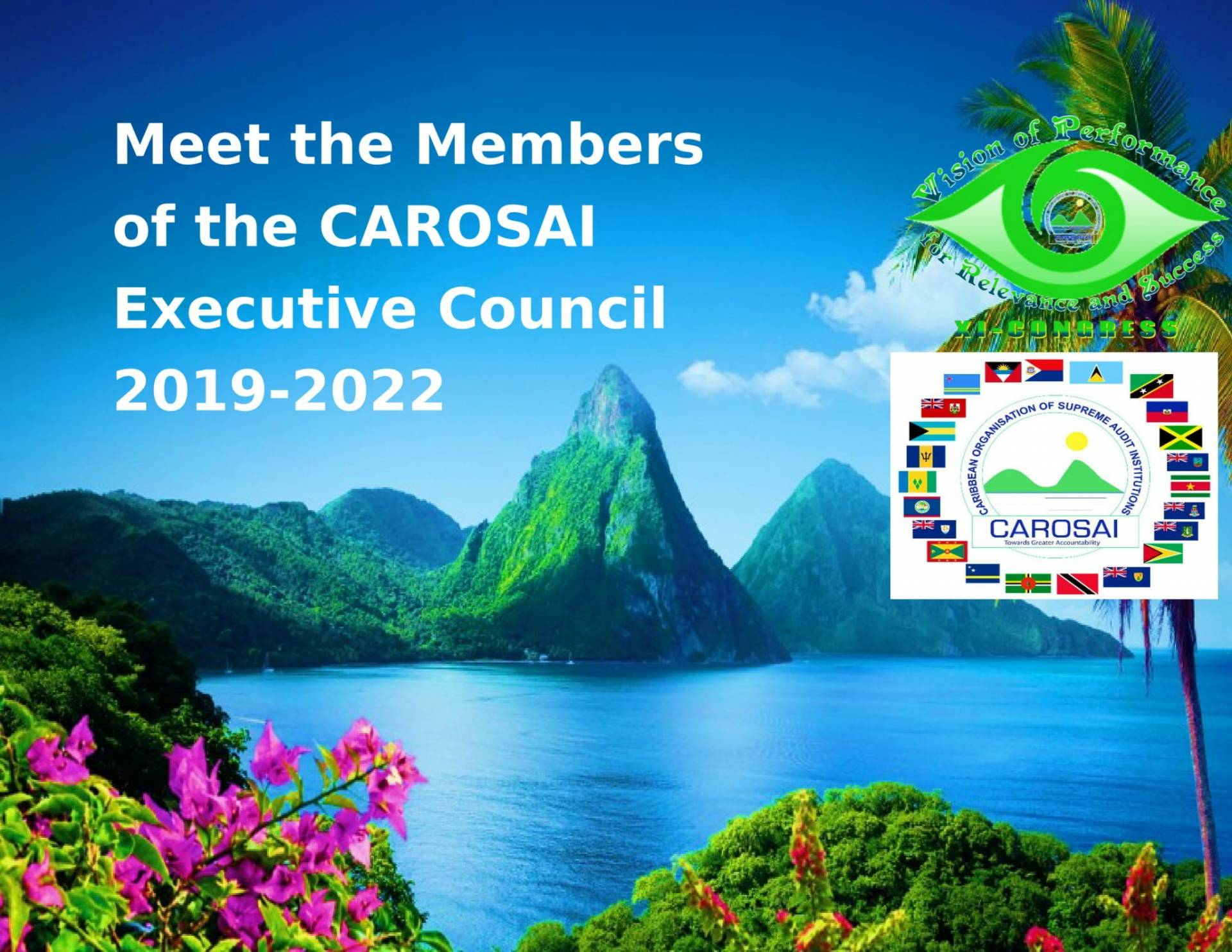 Meet the Members of CAROSAI's Executive Council- 2019 to 2022